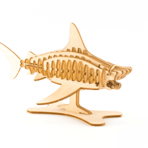 Kigumi shark