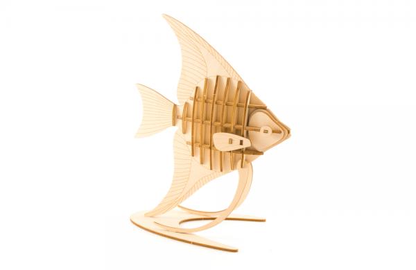 Kigumi Anglefish