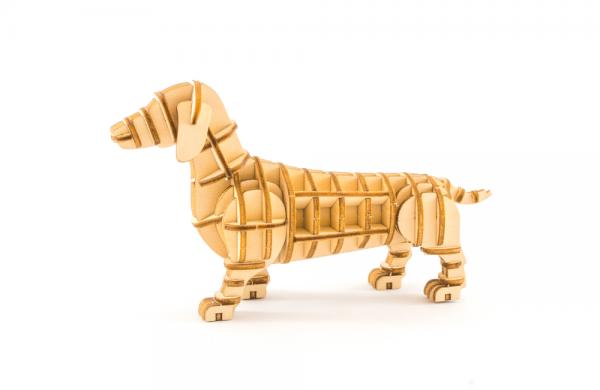 Kigumi dachshund
