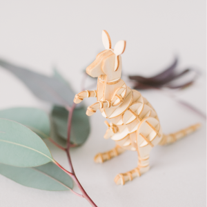 Igumi kangaroo social